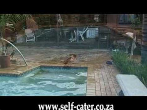everybody loves sexy south african girls swimming nude to