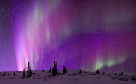 The Elusive Purple Aurora | I've seen patches and bands of