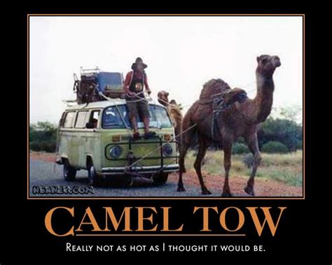 Nsaney'z Posters II: Dromedary Towing Company