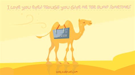 39 Camel Puns - A Healthy Serving Of Just Deserts And Laughter