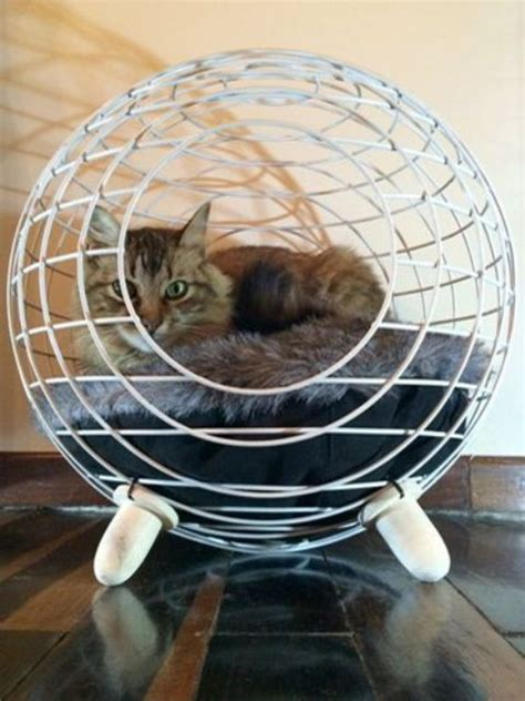 Spoil Your Kitty: 27 Creative And Cozy Cat Beds - DigsDigs