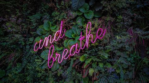 Breathe Neon Sign 5K Wallpapers | HD Wallpapers | ID #27243
