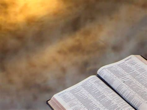 Bible Background 01 - Perfect Stock Footage Video (100%