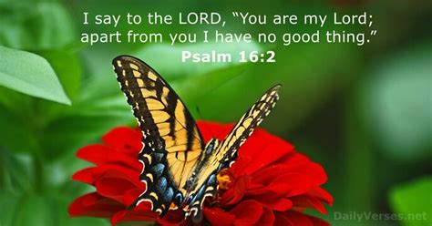 Psalm 16:2 - Bible verse of the day - DailyVerses