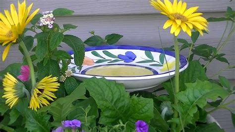 13+ DIYs to Make a Butterfly Feeder | Guide Patterns
