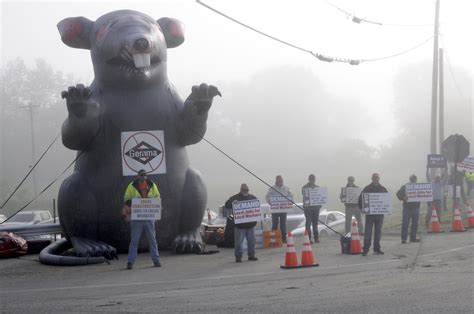 'We got plenty of local help': Local laborers protest out