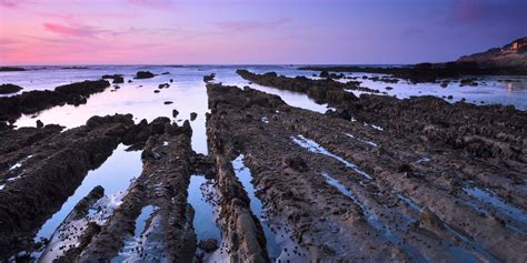 Fitzgerald Marine Reserve | Outdoor Project - Beaches