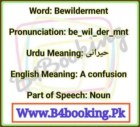 Bewilderment Meaning In Urdu and English and it's