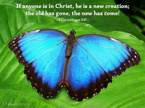 2 Corinthians 5:17 — Today's Verse for Monday, January 1, 2018